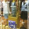 PUCCIの【CAPRI】BLUE♡の画像