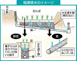 庭の暗渠(あんきょ)排水問題 きこりんフォレスト~夫婦でブログ: http://ameblo.jp/sachico992/entry-11877677471.html