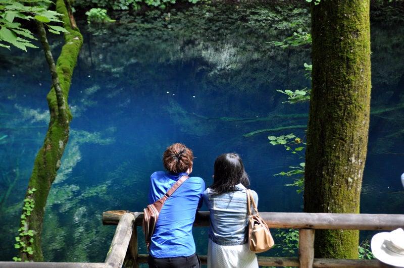 2014年6月の白神山地の十二湖10