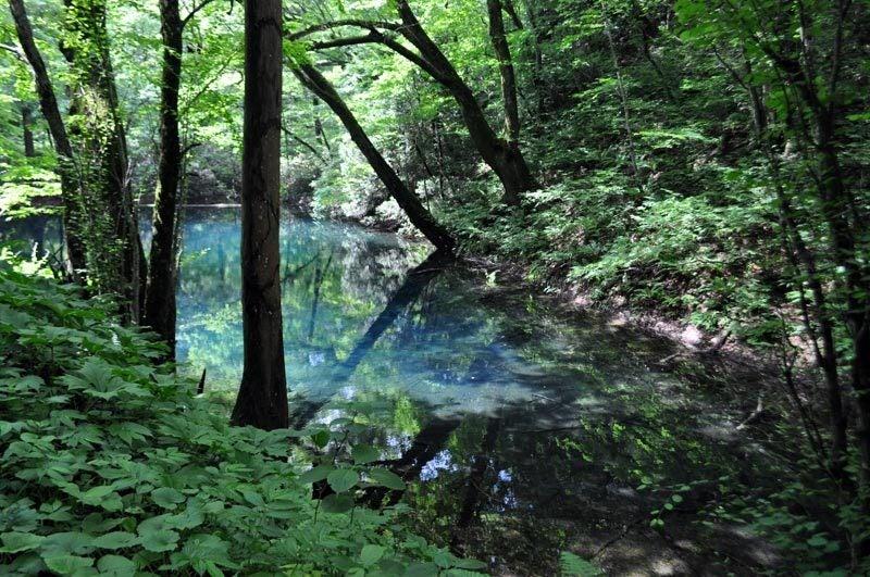 2014年6月の白神山地の十二湖3
