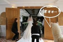 「御結婚おめでとうございます!」ムーミン君&筆次君そして ...