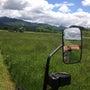 牧草の収穫!!