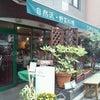 またまた…野菜のお店☆の画像