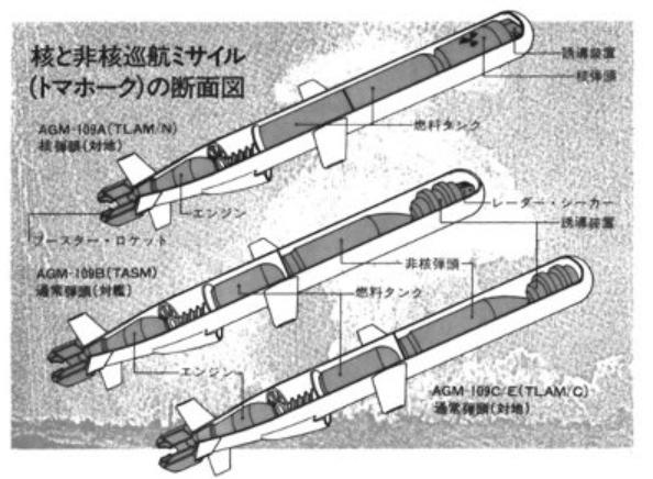 巡航ミサイル | 夢老い人の呟き