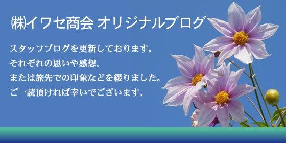 イワセ商会 オリジナルブログ