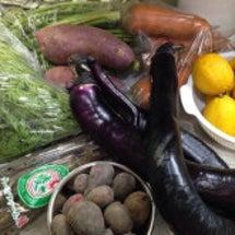 またまた野菜到着‼︎