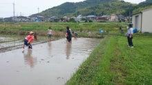 畑で泥んこ遊び