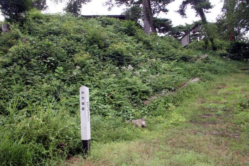 舛方城③/二の丸から本丸を見上げた所