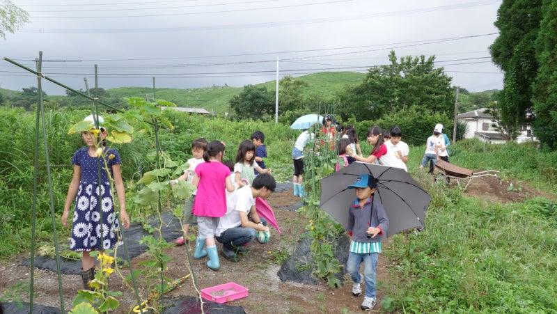 北九州子どもの村小・中学校 | 『ヨガ的にライフチェンジを起こす ...