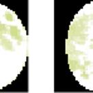 てんびん座上弦の月の作用が効く1週間。の記事より