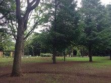 20140720新宿中央公園