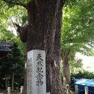 増上寺からのいつものコースの記事より