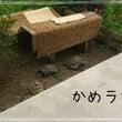 姉の居る長野へ…時々…