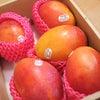 アップルマンゴー☆ライチ♪の画像