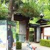 桔梗の寺 天得院の画像
