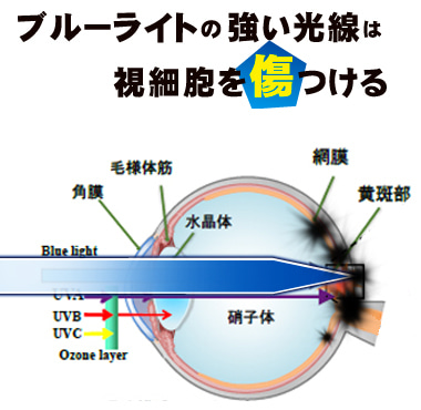 目 ブルー に 悪い ライト パソコンの画面が見にくい、ブルーライトを軽減したい場合の対処法