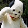 今日は、日光江戸村へ♡の画像