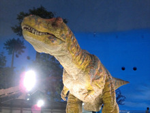 恐竜博物館⑦