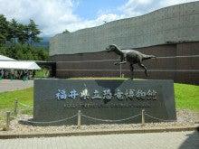 恐竜博物館④