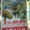 太古の哺乳類展の画像