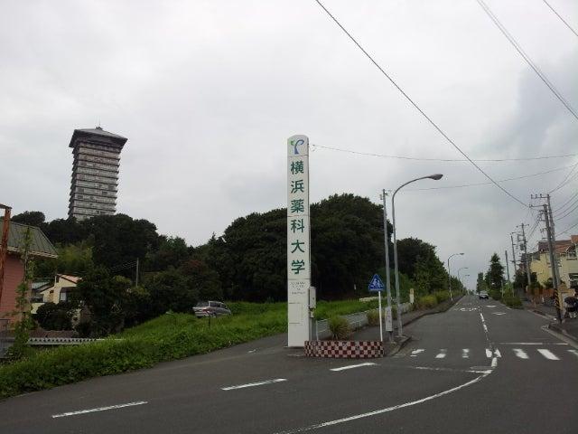 ドリーム ランド 跡地 横浜