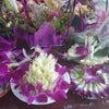 タイのお花と台湾のお花の画像