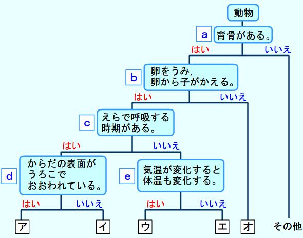 伊賀上野 はなまるせんせいの独り言中2理科(動物のなかまと生物の進化)