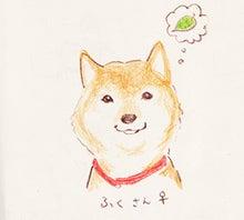 柴犬とわたしのゆるい日常イラストブログ