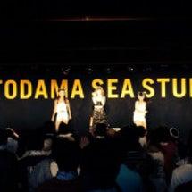 ☆OTODAMA☆