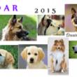 ◆ カレンダー 20…