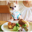 銀柚の夏休み③(J'…