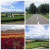 行くぜ、北海道。4日目の画像