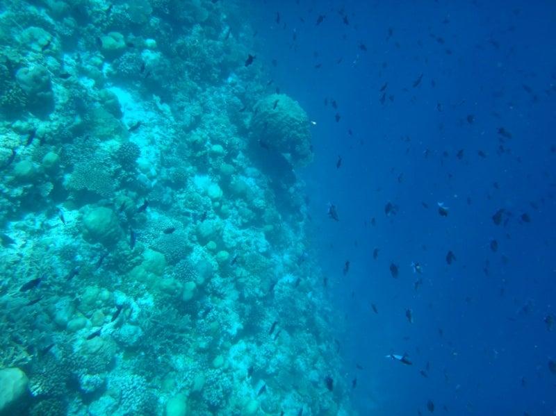 Maldives3-8