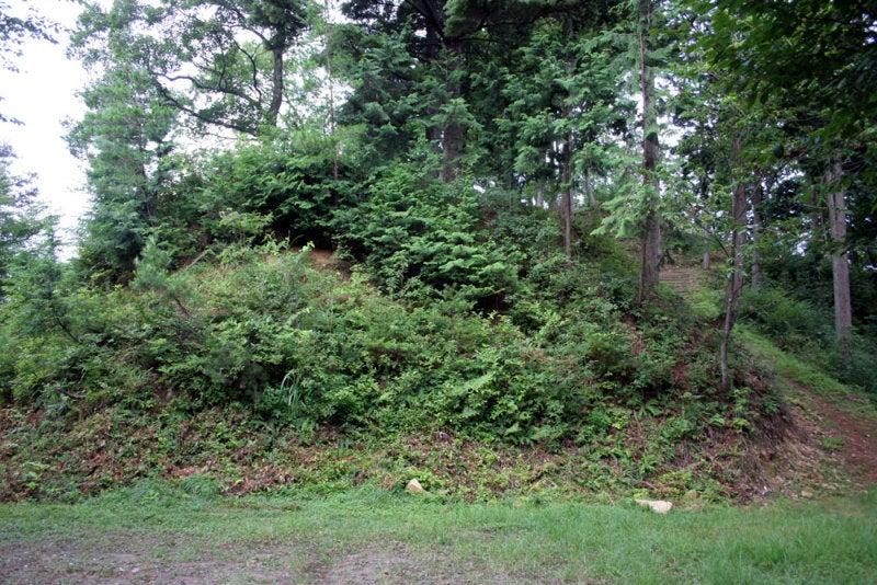 小島城/③案内図から城跡を見上げる