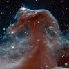 宇宙と脳の画像