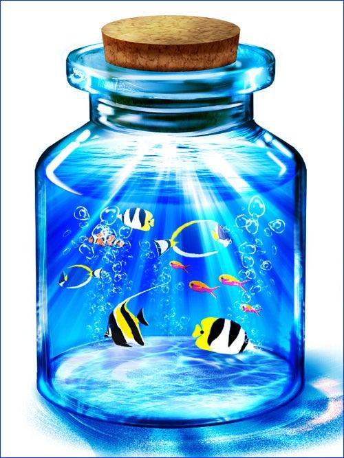Pixivの有名瓶詰めてもいいのよ詰めた 瓶の中の水族館詰めても