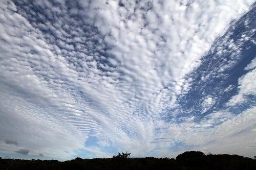 2014.08.07-雲