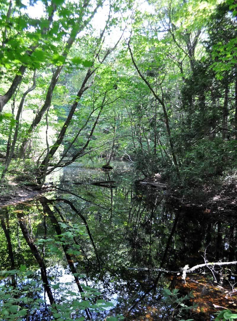 9月の十二湖4