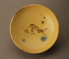 黄瀬戸鯉2