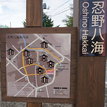 イタグレ夏合宿(最終…