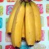 バナナ美活☆の画像
