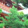 大徳寺 大仙院の画像