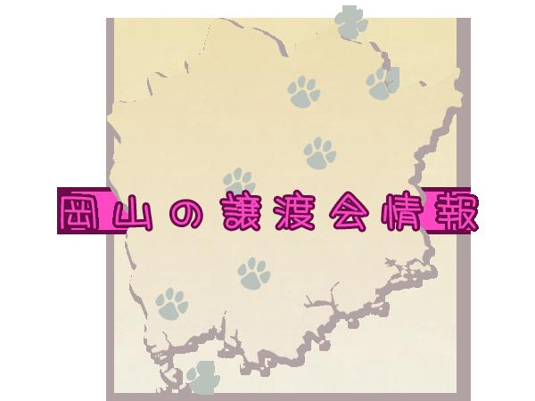 岡山の譲渡会情報