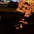 初秋の匂い