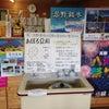 たどり着いたらそこは豆腐屋(忍野村にて)の画像