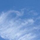 秋の空☆大人気の酵素ドリンクの記事より
