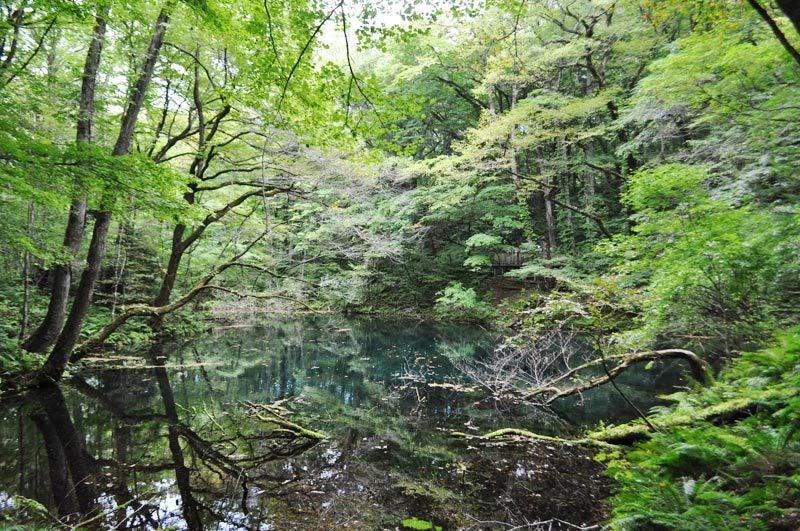 沸壺の池2