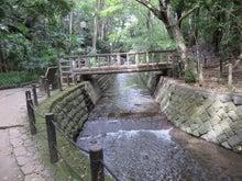 橋がかかる渓流