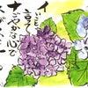 「めくりんこ」がつなぐ中山緑さんとのご縁・・・No.431の画像