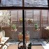 【自宅サロン作り】開業前に考えたいこと④~サロンイメージの画像